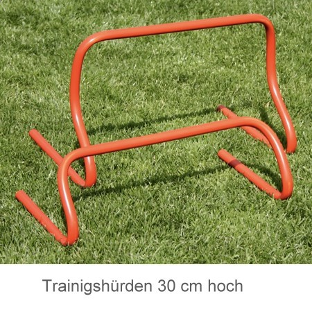 Trainingshürden Set 6Stck 30 cm hoch